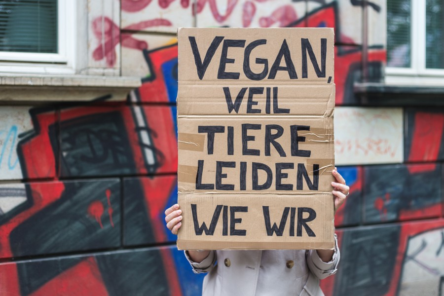2. veganer Geburtstag